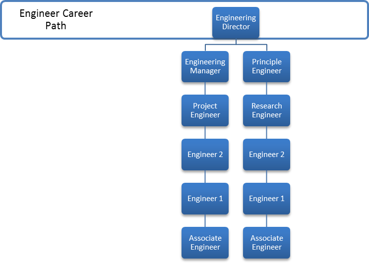 how companies view career management